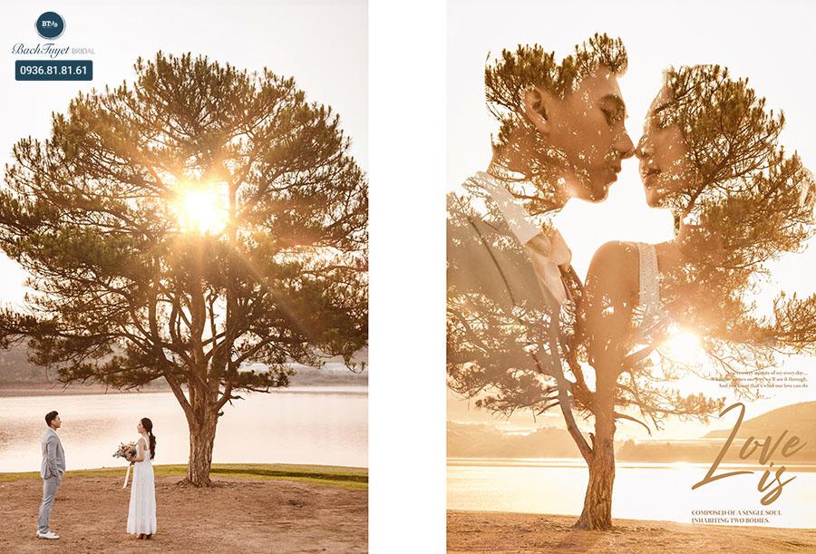 Chụp ảnh cưới ở cây thông cô đơn Đà Lạt